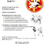 Волгоград, кун-фу объявление